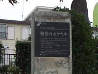 20071201024
