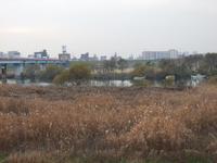 20071212011