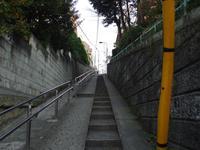 20080109012