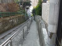 20080109013