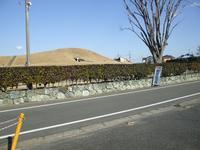 20080207024