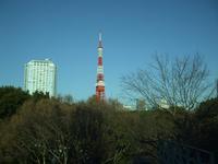 2010011006