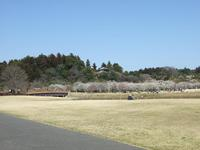 20100315003