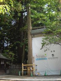 20100615019