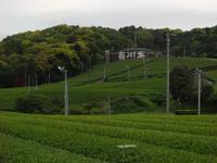 20110605006