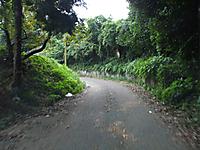 20111004001