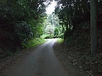 20111004003