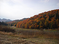 20111109001