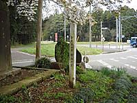 20120420004