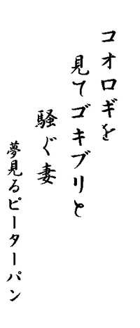 20130911001