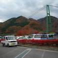 もみじ谷大吊橋の全景