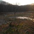 夕陽に映える矢の原湿原