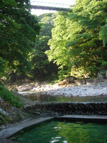 露天風呂から見上げる吊り橋