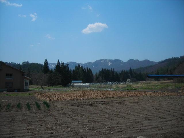 自宅前の風景