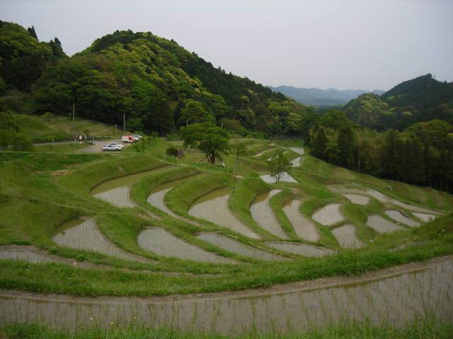 千枚田を見下ろす